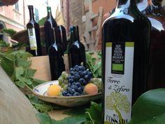 Terre di Zefiro - organic, cold pressed, extravirgin olive oil, variety Carolea