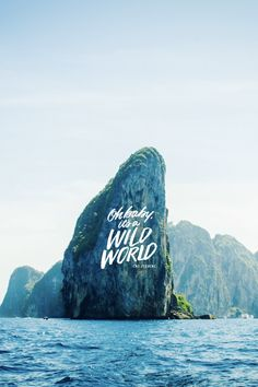 """""""Oh baby, it's a wild world."""" - Cat Stevens Download and edit your own pins in Over today. #madewithover"""