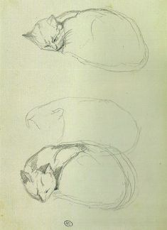 Sleeping cat studies, Jean-Baptiste Camille Corot (1769-1875), 1833