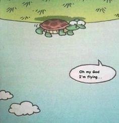 OMG, I'm flying via veryhilarious #Cartoon #Humor