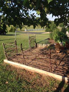 DIY afternoon Project:  Woven Tree Limb Fence.  Little Missouri Homestead