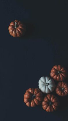 31 Fall Phone Wallpapers Pretty And Cute