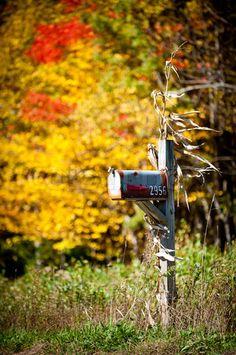 colourful Fall Scenery