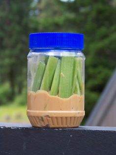 Snacks while traveling...what an awesome idea! Celery, apple slices, pretzels....stuck in sunbutter!