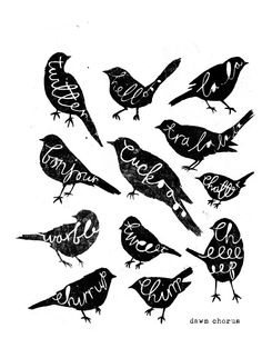 charlotte lucie farmer illustration: jeepers creepers and more twitchy twitching silhouett, charlott farmer, graphic, art, inspir, birds, print, design, illustr