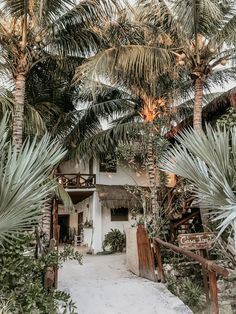 ISLA HOLBOX – The Rue Collective
