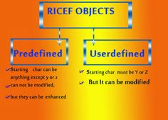 RICEF IN ABAP,abap ricef means,ricef stands in sap,ricef explanation in sap abap
