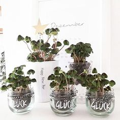 🍀🍀🍀One hand full of luck 🍀🍀🍀 Last year you had this idea so much . 🍀💚🍀💚🍀💚🍀💚 To all 💚🍀lucky glass Party Silvester, Diy Silvester, Fun Wedding Invitations, Wedding Favors, Wedding Gifts, New Years Party, New Years Eve, Happy Greetings, Diy Pinterest