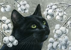 Another of my cats and botanical pictures called Ghostberry #cats #catart #botanicalart