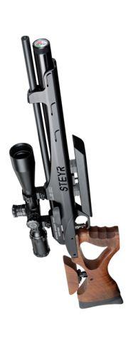 Steyr Sport air gun