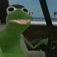 Some Funny Videos, Funny Short Videos, Funny Laugh, Stupid Funny, Otaku Anime, Anime Naruto, Little Misfortune, English Memes, Lion Art