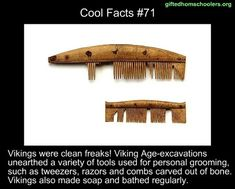 Gwledhomschonlers org Cool Facts Vikings were clean freaks! Viking Age-excavations unearthed a Variety of tools used for personal grooming, such as tweezers, razors and combs carved out of bone. Vikings also made soap and bathed regu'arly.