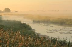 Poland, Podlaskie, Narew River
