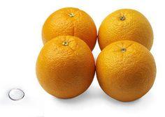 31 weeks orange