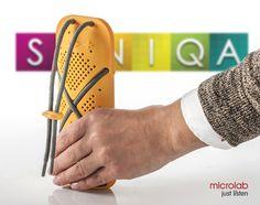 SONIQA - Microlab D22