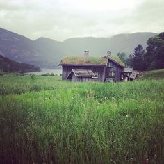 sod roof cabin