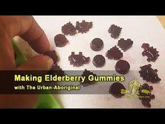 Making Elderberry Gummies w/ The Urban-Aboriginal Aboriginal Food, Homemade Gummies, Elderberry Gummies, Urban, Desserts, Tailgate Desserts, Deserts, Postres, Dessert