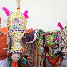 CABALLOS ADORNADOS - Beautify every part of your life. #ecru #jaipur #color #horses #adornment #india