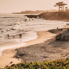 [9 of 10] Photo by @tai_power_seeff // Take your family for a stroll along West Cliff Drive for incredible views of Santa Cruz's beachline. At dusk, kids can play in the late-day tide as surfers and beachgoers stick around to soak in the last light of the day.  Presented by @VisitCalifornia. In a land where kids rule, family vacations rule! California is now #Kidifornia and it's packed with crazy fun adventures.