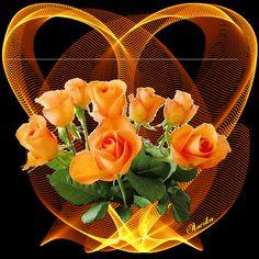 fleurs, roses oranges