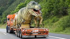 Run, run away as fast as you can.  They have evolved to have WHEELS!!!