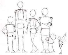 Human Anatomy Fundamentals: Advanced Body Proportions