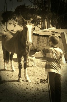 our little friend Jordy with Boogeye the horse.Such a cute pic