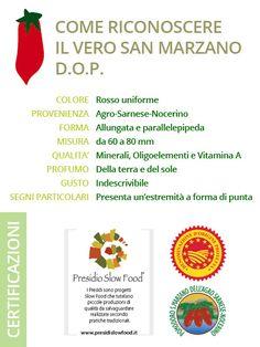 Il San Marzano D.O.P. - Agrigenus - Pomodoro San Marzano DOP
