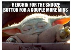 See more 'Baby Yoda' images on Know Your Meme! Yoda Meme, Yoda Funny, Star Wars Meme, Mark Hamill, Starwars, Funny Cute, Hilarious, Funny Laugh, Yoda Images