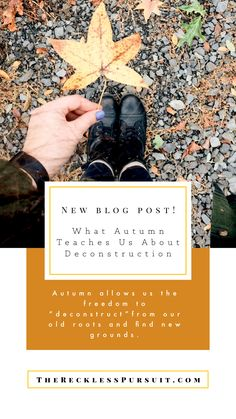 Autumn reminds us that it is okay to let things go 🌿🍃🍁🍂 #autumn #podcast #blogging