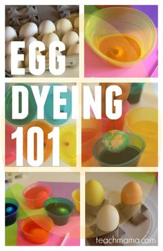 Egg dyeing 101! Make