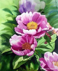 작약을 수채화로 작업했어요. 꽃잎은 물칠해서 번지기로 작업했고꽃수술은 하나하나 묘사했습니다.꽃을 그... Watercolor Pictures, Watercolor Sketch, Watercolor Cards, Watercolour Painting, Watercolor Flowers, Flor Magnolia, Stained Glass Flowers, Acrylic Flowers, Botanical Art