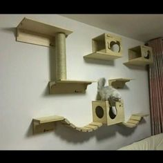 Custom Wall Mount Cat Furniture Wall Systems For Cats Cat Bridge Cat Shelves Customized Cat Condos Cat Tree on Carousell