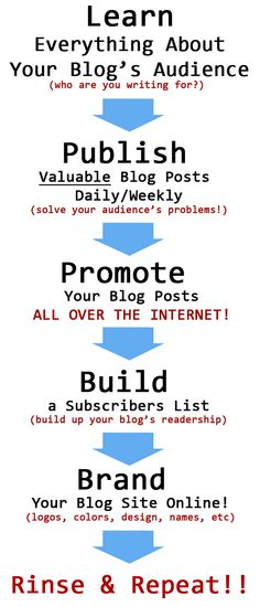 Can You Build a Successful Blog without SEO??