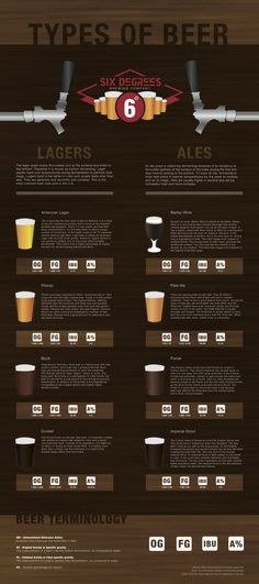 Types Of Beer -Lagers and Ales Infographic