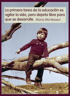 Frases de Maria Montessori: La primera tarea de la educación es agitar la vida, pero dejarla libre para que se desarrolle.