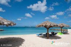 flamingo beach resort, st maarten images - Google Search