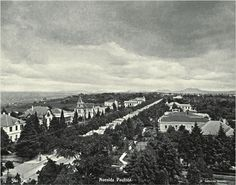 Sampa Historica: A avenida que nao era dos Baroes... - Avenida Paulista 1905 G. Gaensly