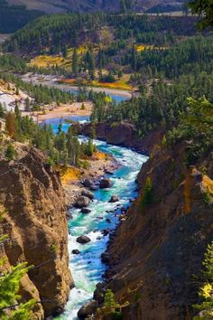 Took a bike ride to Yellowstone last Tuesday and took a lot of fall images. Yellowstone is in full bloom as for the fall colors. Here is another fall color image. Landscape Photography, Nature Photography, Travel Photography, Beautiful Sky, Beautiful Beaches, Yellowstone National Park, National Parks, Fall Images, Places Of Interest