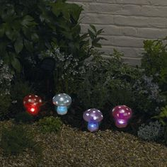 Adorablewell for people who like that sort of thing cool mushroom garden lights aloadofball Choice Image