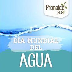 Celebra con #Pronalce el #DíaInternacionalDelAgua y ayuda a preservarla.    #Pronalce #Cereales #Avena #Chocolate #Yogurt #Kumis #Nutrición #Salud #Cereal #Desayuno