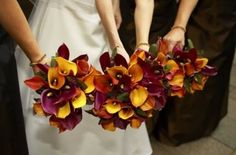 BINGO this is exactly what we are doing!  purples and orange calla lillies!
