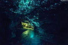 Glow worm cave, New Zealand #beautiful #place #good #travel #cave # nice #picoftheday #loveit #seraph #seraphstore  www.seraphstore.com