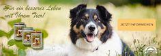 Hundefutter und Tierbedarf von REICO – Die natürliche Ernährung