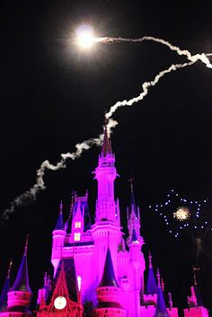 Disney's Magic Kingdom. We will be taking the nieces there this Fall.