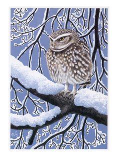 Owl by Robert Gillmor