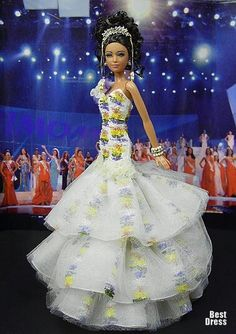Miss Dominican Republic 2009/2010