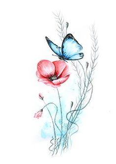 dori Galerie: Zeichnungen und Bilder How to Carry a Ladder Correctly In today's world, it seems that Rose Drawing Tattoo, Butterfly Drawing, Butterfly Painting, Blue Butterfly, Watercolor Cards, Watercolor Flowers, Watercolor Paintings, Watercolor Tattoo, Beautiful Rose Drawing