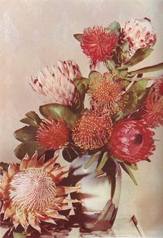 Love the idea of using Natives as a general flower theme. In pretty pinks and soft peaches.