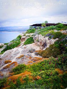 Pafos / Cyprus / sea / Akamas Cyprus Island, Cyprus Greece, Paphos, Island Nations, Pure Beauty, Holiday Travel, Portugal, Traveling, Spa